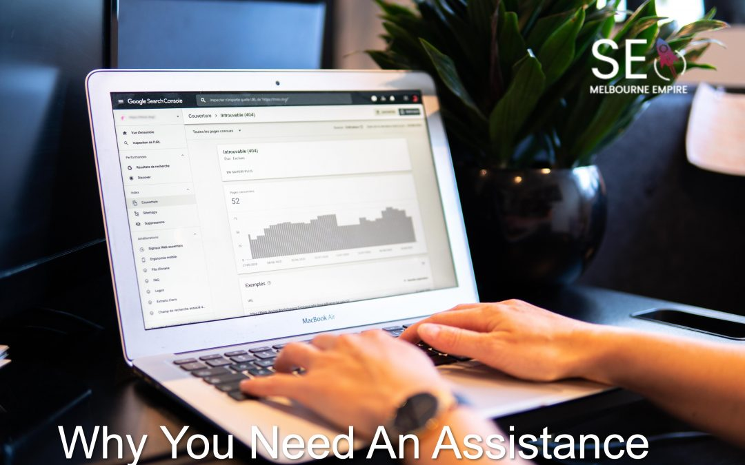 Why You Need a SEO Assistance